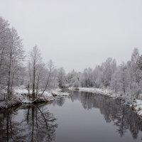 Зимнее настроение :: Андрей Костров