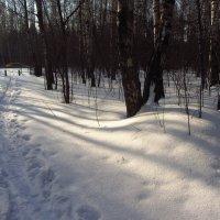 Вполне еще зима :: Андрей Лукьянов