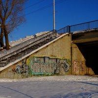 Зимняя прогулка :: Алексей Афанасьев