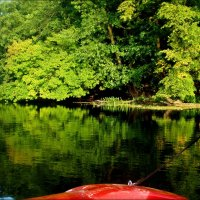 Катание на реке :: Татьяна Пальчикова