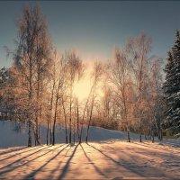 Утро :: Виктор Четошников