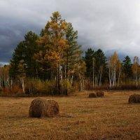 Осень :: IURII