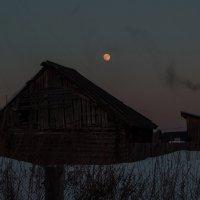 За забором под луной :: Геннадий Федоров