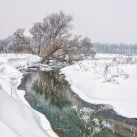 Серое, серое утро :: Николай Андреев