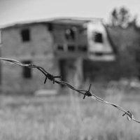 Тихая жизнь :: Sage Ekchard