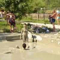 Ну очень целебная грязь! :: Владимир Болдырев