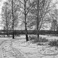 """""""На исходе зимы"""" :: Светлана"""