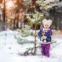 Зимушка-зима :: Юлия Зубкова