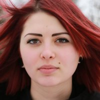 Алиса :: Владимир59