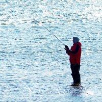 Солнечный рыбак :: Александр Запыленов