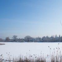 Мороз и солнце :: Сергей Касимов