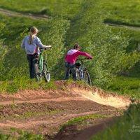 В зеленое лето :: Владимир Макаров