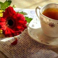 Одно письмо :: Анастасия Светлова