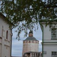 Кирилло-Белозерский монастырь :: Светлана Ларионова