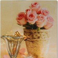 такие разные розы... :: Lena