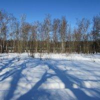 На солнечной поляночке :: Валюша Черкасова