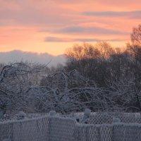 Как то утром на рассвете... :: Mariya laimite