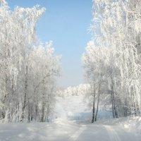 Прощальный бал зимы. :: nadyasilyuk Вознюк