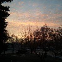 Февральское утро :: Victory Kryuchkova