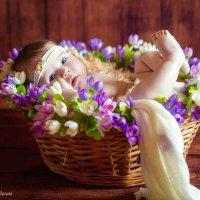 Скоро весна :: Эльмира Грабалина