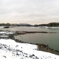 Обмелела Москва-река... :: Николай Дони