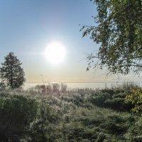 Первые заморозки :: Валерий Смирнов