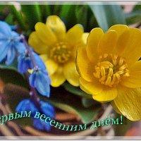Вот и наступила долгожданная Весна!!!.. :: Нина Корешкова
