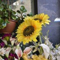 Однажды в цветочном магазине :: Ефим Хашкес
