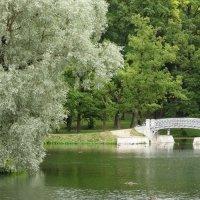 Гатчина. Дворцовый парк. :: Владимир Гилясев