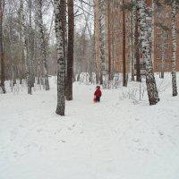 Первый день весны. :: Мила Бовкун