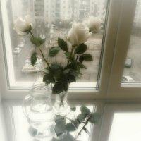 С началом Весны!... :: Людмила Павлова