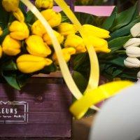 Первый день весны :: Ксения Барулина