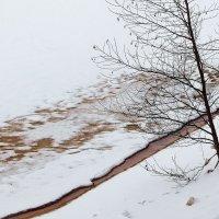 О вешних водах грезят берега... :: Лесо-Вед (Баранов)