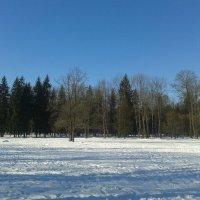 Парк в марте :: Сапсан