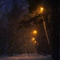 весенний снегопад :: alexzonder