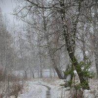 Весенняя непогода :: Юрий Анипов