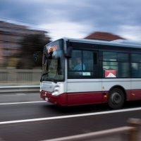 куда едет итальянский автобус? :: Елена Заичко