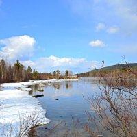 Весна на Пиренге :: Ольга