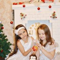 Новый год :: Юлия Шишаева