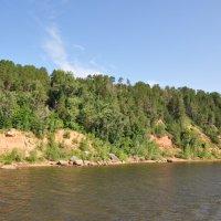 Крутой берег реки, поросший лесом :: Сергей Тагиров