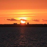 Закат на Калининградском заливе :: Юлия Горбатенко