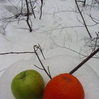Натюрморт на снегу :: Андрей Лукьянов