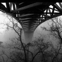 Он разорвал туман. :: Vladimir Shapoval
