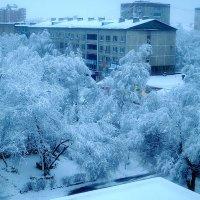Зима художница! :: Виктор Никаноров