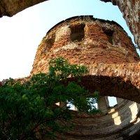 Разрушенный  Храм..... Крик. :: Валерия  Полещикова
