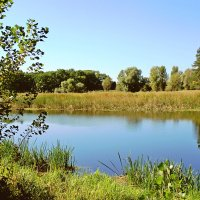 Озеро :: Валентина Домашкина