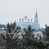 Вид на церковь Покрова Божьей Матери :: Александр Подгорный