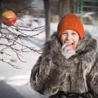 Яблочная зима. :: Ирина Забровская