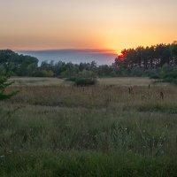 Закатный луг. :: Андрий Майковский