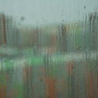 Летний дождь :: Ольга Логинова
